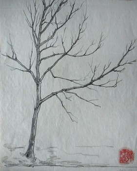 tingting han jinyu filter baum baum 1 20x25cm bleistift auf papier 2010. Black Bedroom Furniture Sets. Home Design Ideas